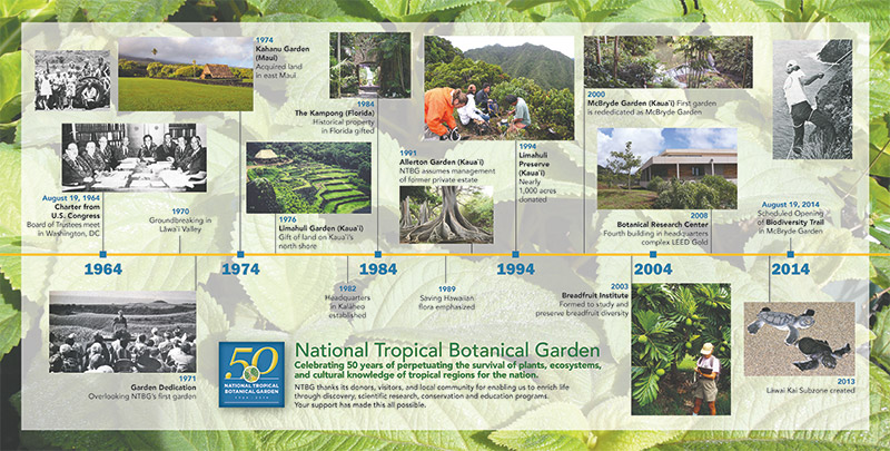 Graphic historical timeline from 1964 to 2014 with a green flora backdrop.